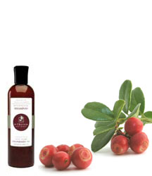 cranberry shampoo