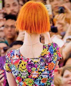 hayley's short hair from behind and back of neck